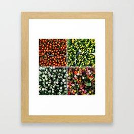 Tulips from Holland - orange & yellow Framed Art Print
