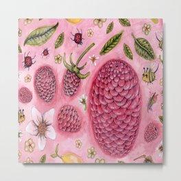 a lemon, a few raspberries and some bugs Metal Print
