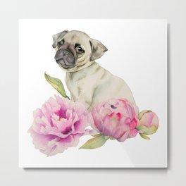 Pug and Peonies | Watercolor Illustration Metal Print