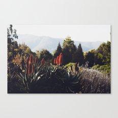 Australian Mountains Canvas Print