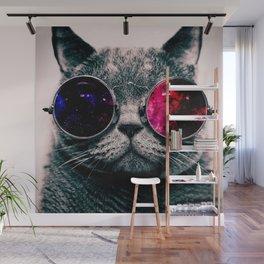 sunglasses cat Wall Mural