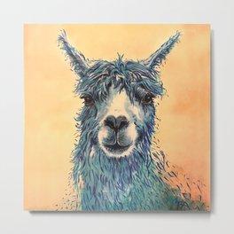 Save the Drama for Your Llama Metal Print