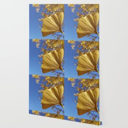 Ginkgo Gold! With sapphire sky Wallpaper