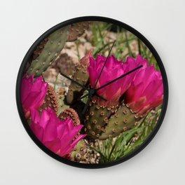 Beavertail Cactus in Bloom - II Wall Clock