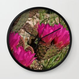 Beavertail Cactus in Bloom - II Wall Clock