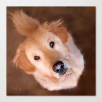 golden retriever Canvas Prints featuring Golden Retriever by Christina Rollo