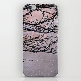 Dusky Winter Days iPhone Skin