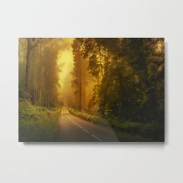Driving this road Metal Print