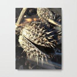 Audrey III Metal Print