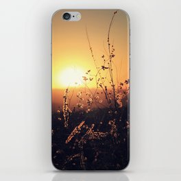 Sunset in Payson II iPhone Skin