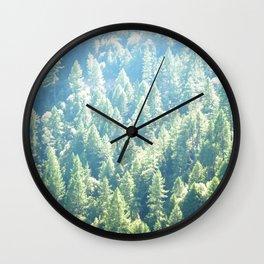 California trees Wall Clock