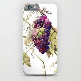 Grapes, California Vineyard Wine Lover design iPhone Case