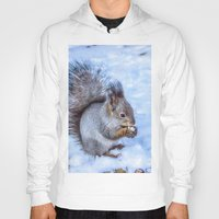 squirrel Hoodies featuring Squirrel  by Svetlana Korneliuk