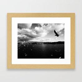 Black and white birds Framed Art Print