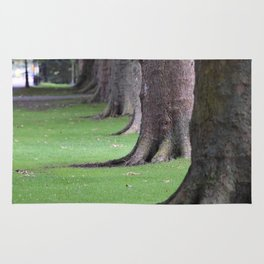 Cambridge tree 1 Rug