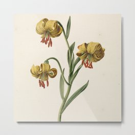 M. de Gijselaar - Branch with three yellow lilies (1834) Metal Print