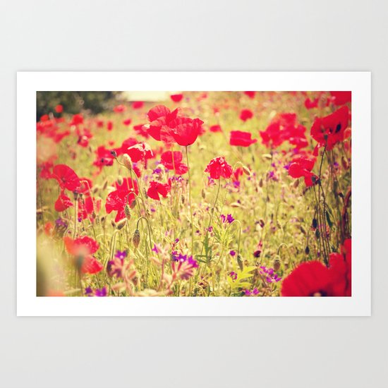 Whisperings of Scarlet Fields Art Print