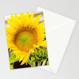 Helianthus Stationery Cards