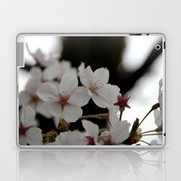 Sakura blossoms up close Laptop & iPad Skin