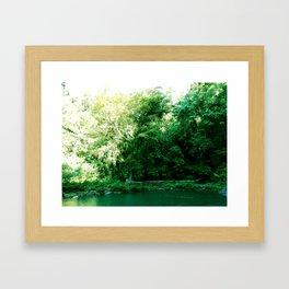 Dead Pool Framed Art Print