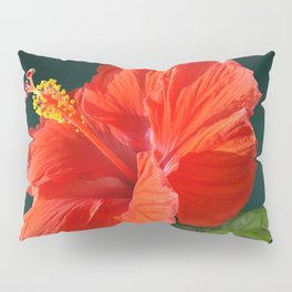 Red Darling Hibiscus Pillow Sham