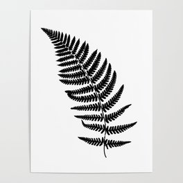 Fern frond black silhouette. Forest concept. Poster