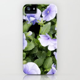 Longwood Gardens Orchid Extravaganza 55 iPhone Case
