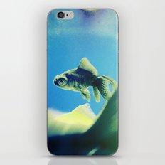 One Fish Two Fish iPhone & iPod Skin