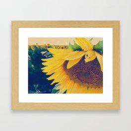 sunflower and little bee Framed Art Print