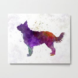 Picardy Sheepdog in watercolor Metal Print