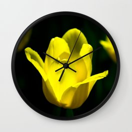 Chips Of Sun Wall Clock