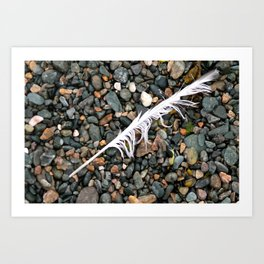 Don't let the rocks weigh you down, remember you're always - light as a feather! Art Print