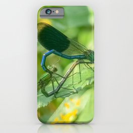 Damselfly's Mating iPhone Case