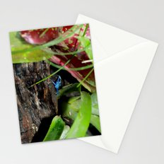 Poison Dart Frog- Young Froglet Stationery Cards