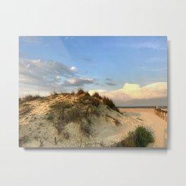 Dunes of St Augustine Metal Print