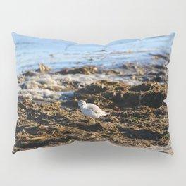 At the beach 8 Pillow Sham