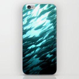 Thousands of jack fish iPhone Skin