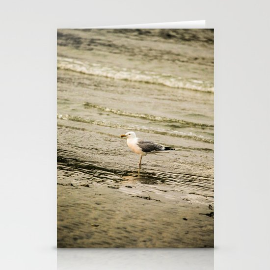 Seagull (Sea Birds) Stationery Cards