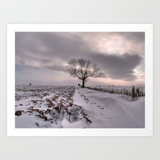 Cold and Lonely Art Print
