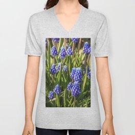 Grape hyacinths muscari Unisex V-Neck