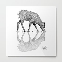 Black & White Line Work Animal Reflection Vector Metal Print
