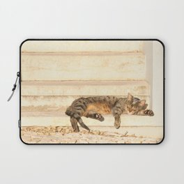 The sun shines on all cats equally Laptop Sleeve