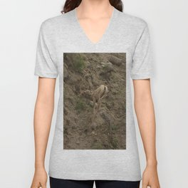 Baby Mountain Goat in Yellowstone National Park, WY Unisex V-Neck