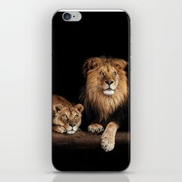 Lion and lioness, animals family. Portrait in the dark iPhone Skin