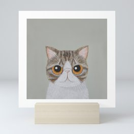 Exotic Shorthair Mini Art Print