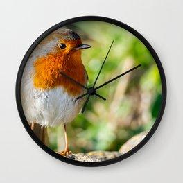 Robin. Wall Clock