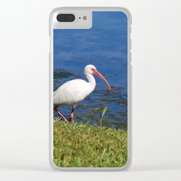 A Dip in the Pond Clear iPhone Case
