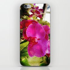 orchids3 iPhone & iPod Skin