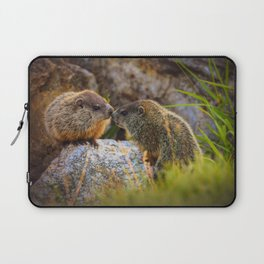Love and Kisses II Laptop Sleeve