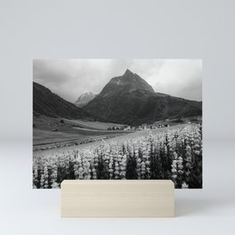 Alpine summer, Austria Mini Art Print